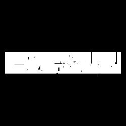 logo colaborator Paul Padurariu